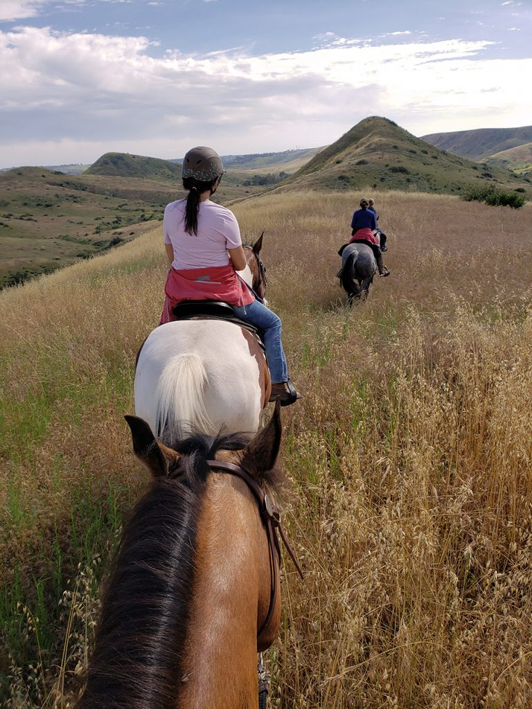 stepp stables group trail ride rolling hills